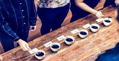 Cata, cata de café, taza de café, café orgánico, café café, café verde, café ecológico